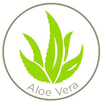 Aloe_Vera_350x350